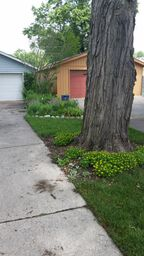 bed by driveway 2014